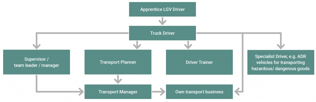 Truck driver career progression options flow chart