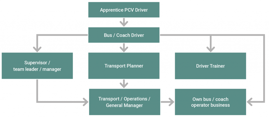 Bus or coach driver career progression options flow chart