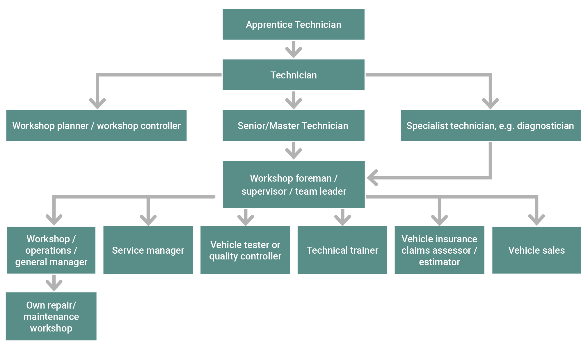 Technician or mechanic career progression options flow chart